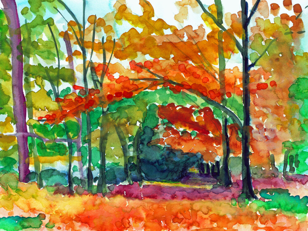 Herfst in Oranjebond